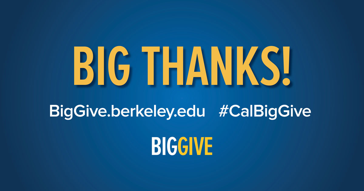 Big thank you text graphic